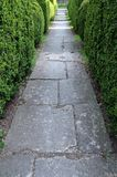 Garden Path and Hedgerow. Detail of a Stone Paved Garden Path and Topiary Hedgerow Stock Images