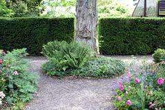 Garden path and herbaceous borders Royalty Free Stock Photo