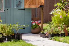 Garden path leading to a painted shed Stock Image