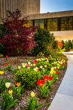 Garden and path outside the Washington DC Mormon Temple in Kensi Royalty Free Stock Images