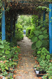 Garden path with overhead arch of vines leading to courtyard. Domestic garden with paved pathway leading to informal courtyard of plants Royalty Free Stock Photography