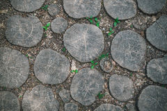 Garden path paved with oak planks Stock Images