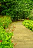 Garden Path, Singapore Botanic Gardens Royalty Free Stock Photography