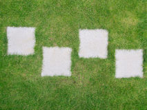 Garden path - slabs in mowed grass lawn Stock Photography