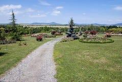 Garden path in slovak arboretum. Beautiful garden path in slovak arboretum Royalty Free Stock Image