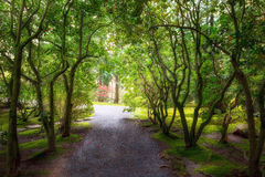 Garden Path in Spring Portland Japanese Garden Oregon Stock Photography