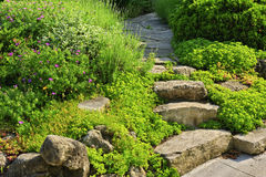Garden path with stone landscaping stock photo