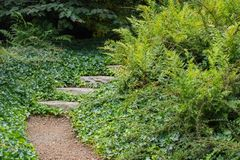 Garden Path to Nowhere. Garden Path going to Nowhere stock photos