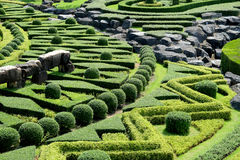 Garden path with topiary landscape Stock Photos
