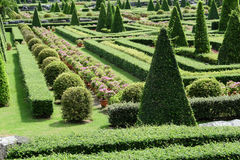 Garden path with topiary landscape Stock Photo