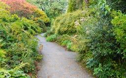 Garden Path View. Pathway through a Beautiful Green Leafy Garden Stock Photography