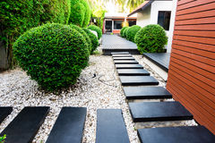 Garden path on white pebbles and lush green trees. Royalty Free Stock Photography