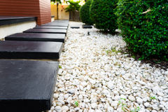 Garden path on white pebbles and lush green trees. Stock Images