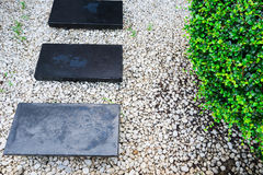 Garden path on white pebbles and lush green trees. Royalty Free Stock Image