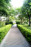 Garden paths Royalty Free Stock Photography