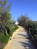 Garden Pathway Stock Image