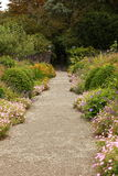 Garden pathway. Royalty Free Stock Photo