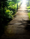 A garden pathway. A pathway with a sun shine Stock Photography