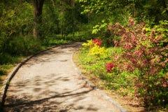 Garden pathway Royalty Free Stock Photo