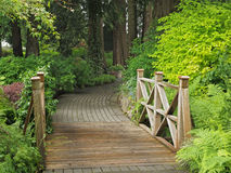 Garden pathway with bridge Stock Image