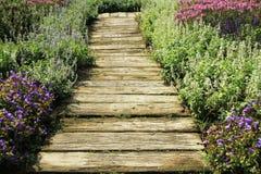Garden pathway Royalty Free Stock Photos
