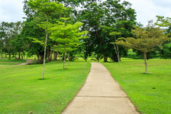 Garden And Pathway Royalty Free Stock Photography