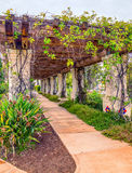 Garden Pathway Stock Photography