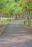 A garden pathway Stock Photography