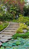 Garden with pathway Stock Image