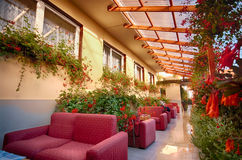 Garden patio with sofas and flowers Royalty Free Stock Photos