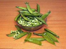 Garden pea (Pisum sativum) Stock Photos