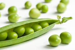 Garden Peas Royalty Free Stock Photos