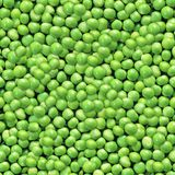 Garden Peas. Seamless Texture Tile from Photographic Original royalty free stock image