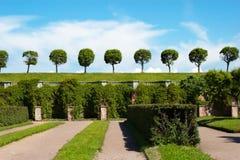 Garden of Peterhof Stock Images