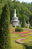 Garden of Peterhof. Garden and fountain of Peterhof, Russia Royalty Free Stock Photo