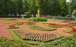 Garden of Peterhof. Garden and fountain of Peterhof, Russia Stock Images