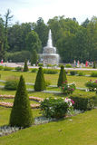 Garden of Peterhof. Garden and fountain in Peterhof, Russia Stock Photos