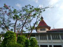 Garden of Phayathai Palace. European style palace in center of Bangkok , Thailand Royalty Free Stock Photo
