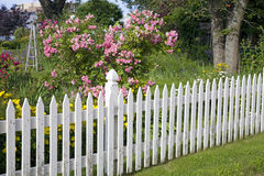 Garden Picket Fence Stock Photo