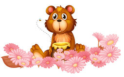 A garden of pink flowers with a bear Stock Photos