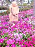 Garden pink. Flowers fully spring break Stock Images