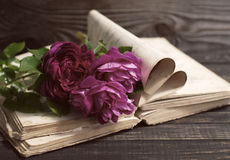 Garden pink roses and the old book on a wooden table in vintage style. Stock Photos