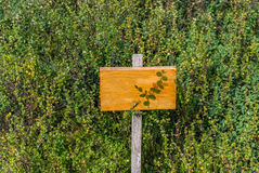 Garden plant sign post text here holder Stock Image