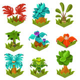 Garden Plants with Flowers for Game Stock Images