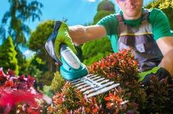 Garden Plants Trimming. Caucasian Men Trimming Rockery Garden Plants Using Electric Trimmer Stock Image