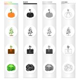 Garden, plot, vitamins and other web icon in cartoon style.Vegetables, nature, farm icons in set collection. Stock Images