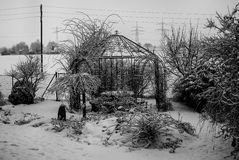Garden Plot In Winter. After Snow Storm Royalty Free Stock Images