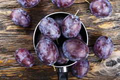 Garden plums in bowl. Organic food. Top view with copy space for your text Stock Photography
