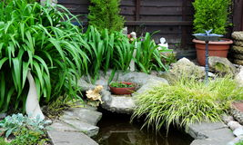 Garden pond Royalty Free Stock Photography
