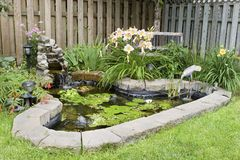 Garden Pond. In a back yard Stock Image